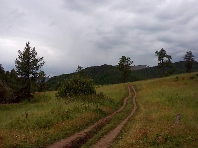 20180817. На спуске с хребта Катунские Белки, вдоль маральника.