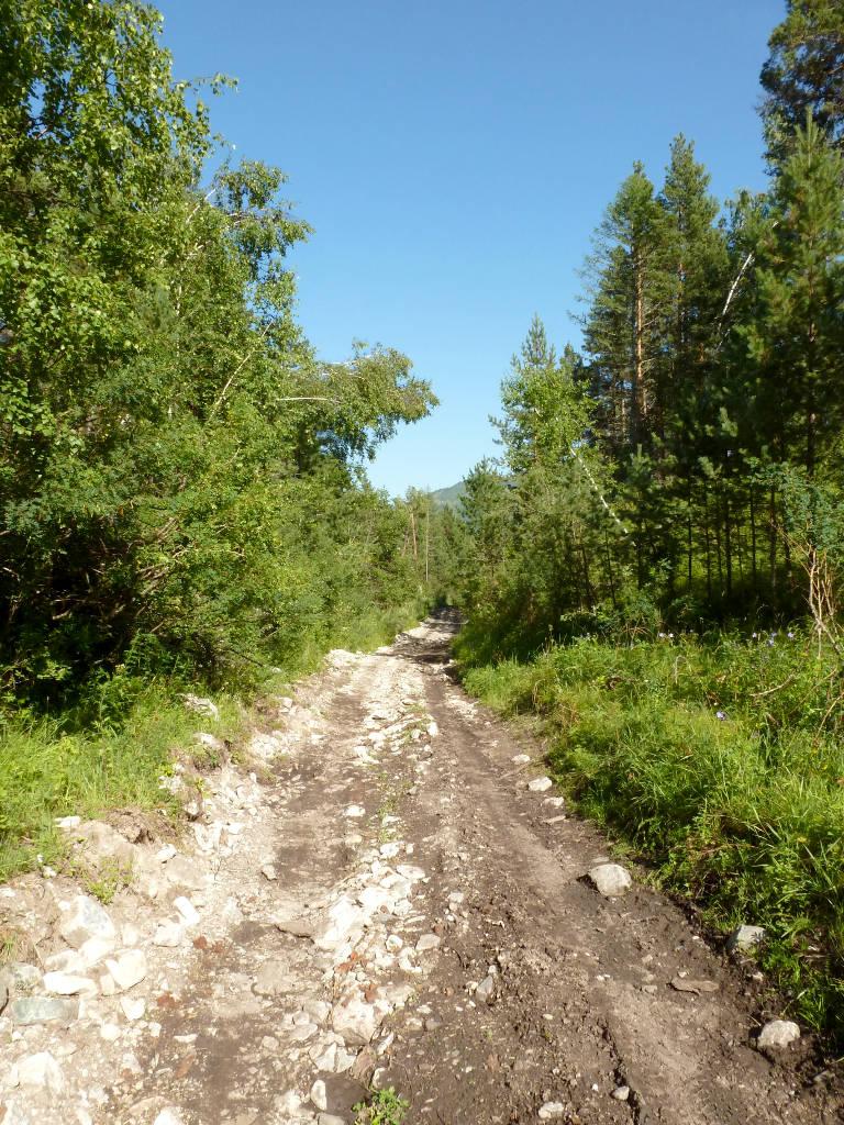 20180806. Горная дорога лесистыми склонами, вдоль речки Ороктой.