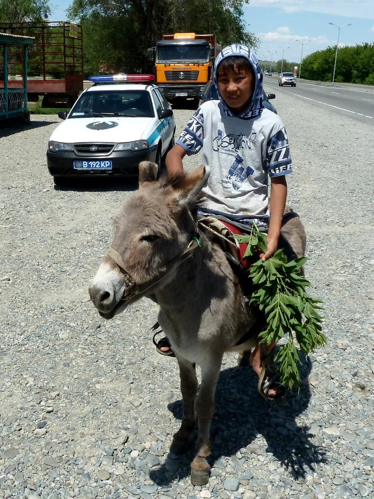 20130529. Бойкий маленький местный житель, из посёлка Еркин.