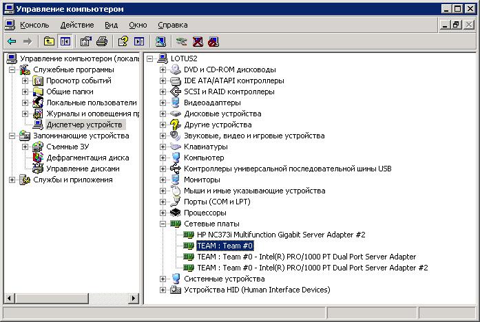Adapter Teaming. Intel. Microsoft Windows 2003: Общий вид списка сетевых интерфейсов после осуществления агрегирования.