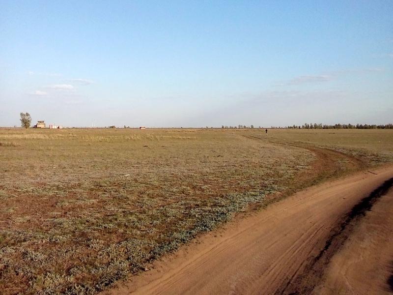 20160518. Степная дорога от посёлка Авиагородок к юго-западной оконечности аэродрома.