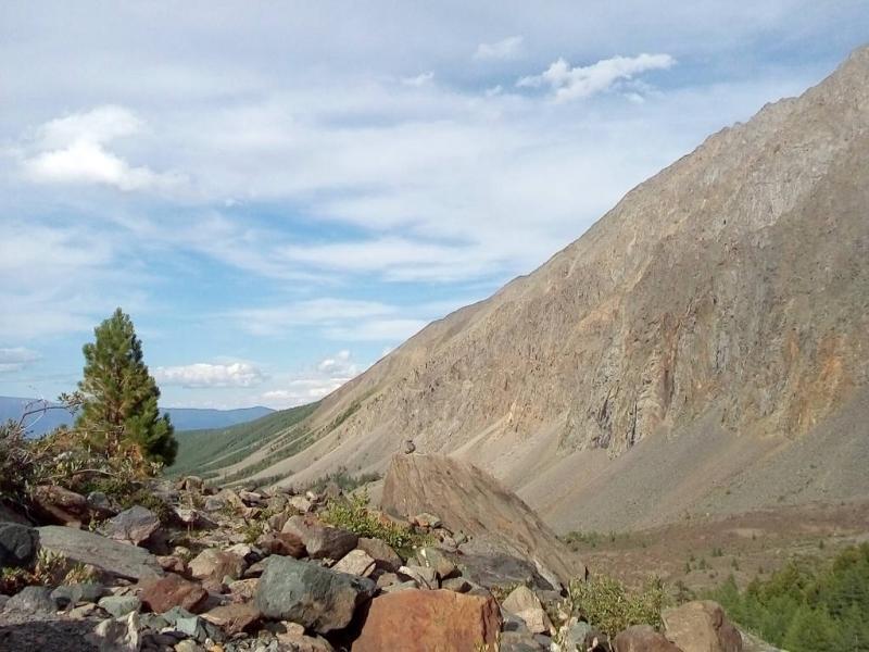 20180811. Вид в ущелье реки Актуру, в километре выше альплагеря.