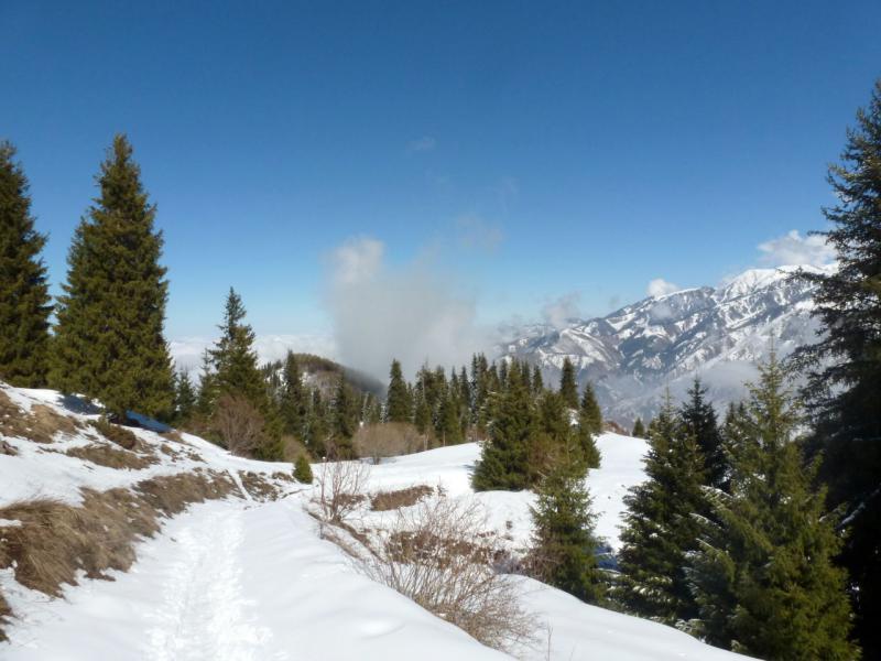20160320. Тропа в снегу, на пути в урочище Кок-Жайляу.