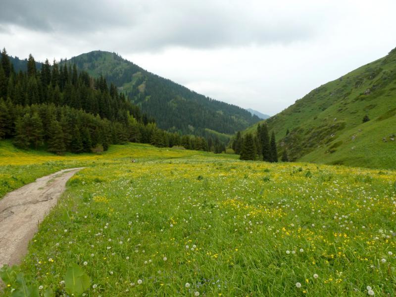 20160529. В нижней части спуска с Кок-Жайляу в Большое Алматинское ущелье.