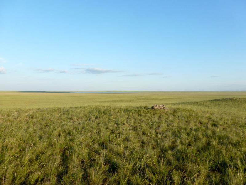 20160805. Вид на низину солёного озера Балакескенсор с западного края.