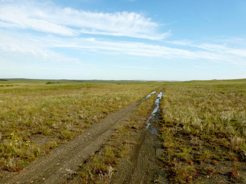 20160807. Типичная дорога в предгорьях Ерейментау из глинистого песчаника, размокшая после дождя.
