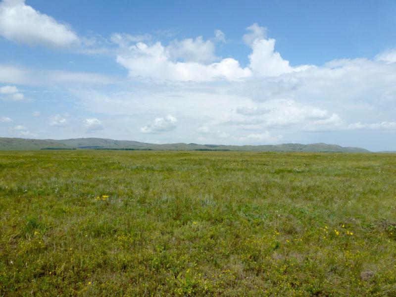 20160807. Долина между горами Ерейментау и Буйратау, вид на север.