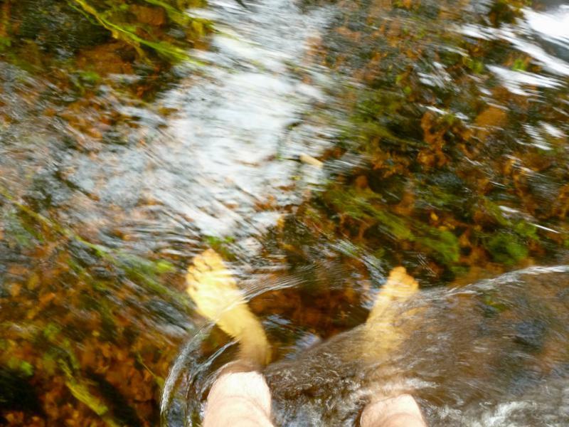 20160807. В речушке Карабулак, глубина которой в лучшие времена не превышает одного метра.