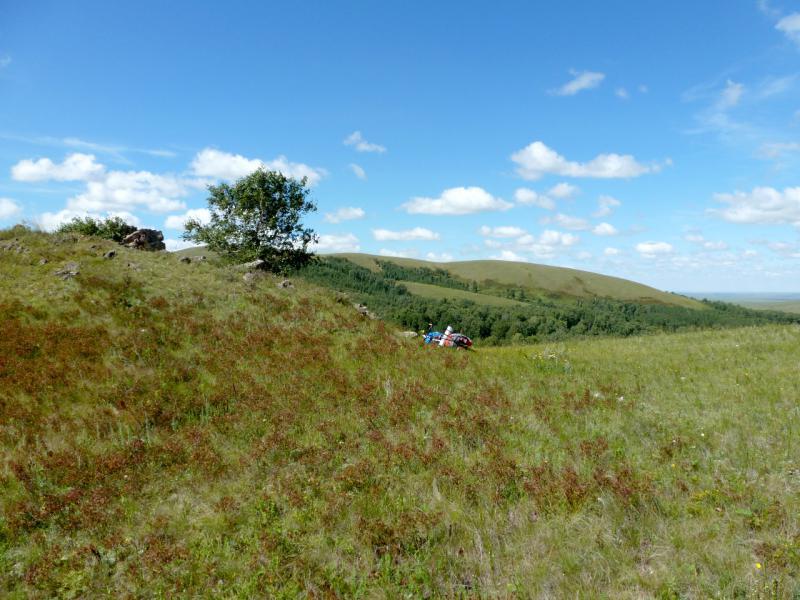 20160808. На одной из высоток западнее села Алгабас в горах Ерейментау.