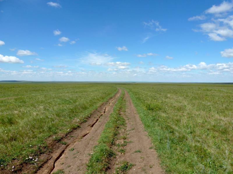 20160808. Дорога вдоль пересыхающей речки Жарык, по направлению к одноимённому селу.