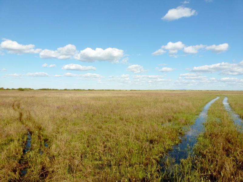 20160808. Затопленная разлившейся речкой Кумая дорога к селу Ржищево.