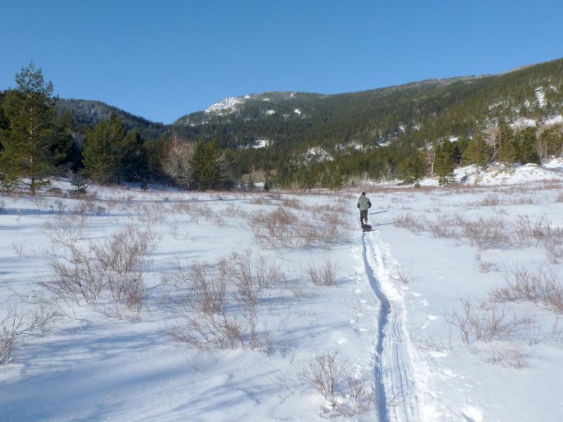 20170115. На тропе проложенной в снегу лыжами и волокушей.