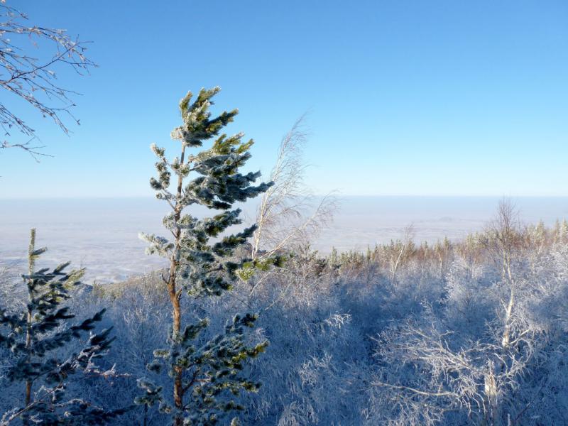 20170115. Вид на окружающие Баянаул степи с южного склона горы Акбет.