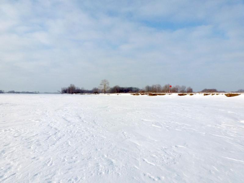 20170129. Вид на правый берег с середины замёрзшей реки Иртыш.