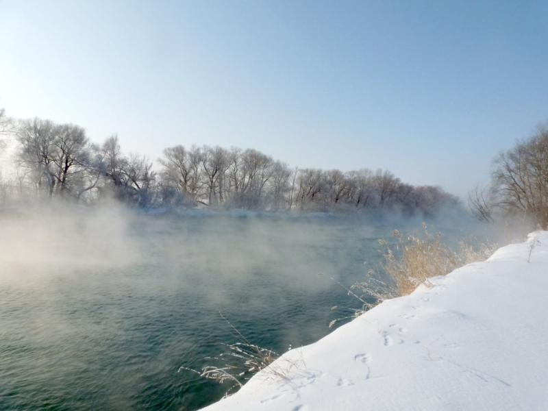 """20170129. У протоки """"тёплое течение"""" (она же """"Старый Иртыш""""), парящей от нагретой Аксусской ГРЭС воды."""