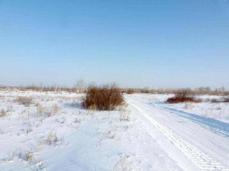 20170129. Дорога в село Потанино, по которой вывозят с лугов накошенное за лето сено.