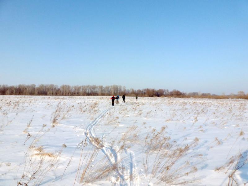 20170129. Торим лыжню целиной, на пути домой, в Павлодар.