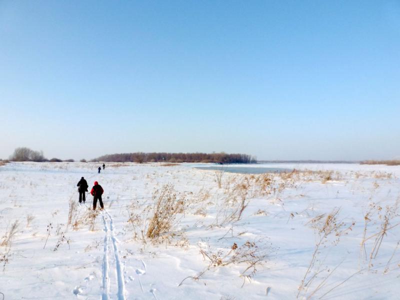 20170129. Обходим берегом полыньи, промытые во льду водой на повороте русла.