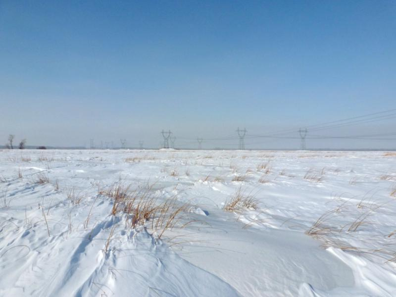 20170218. Типичный вид окрестностей во время нашего лыжного перехода из Аксу в Павлодар - степь или пойма кругом, и лишь редкие ориентиры вдали.
