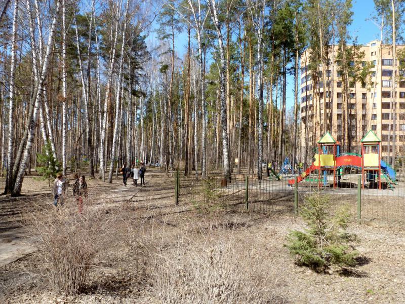 20170422. В парке у пересечения улиц Терешковой и Академика Коптюга.