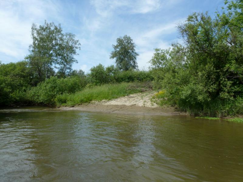 20170624. Брод через речку Коён, километров через пять юго-западнее впадающей в Бердь.