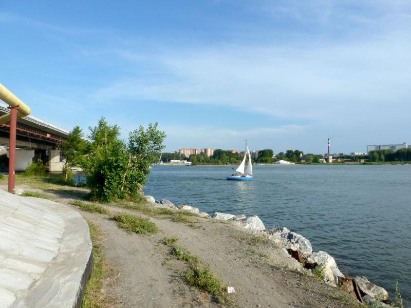 20170624. У автомобильного моста через реку Бердь, в месте её впадения в новосибирское водохранилище на реке Обь.
