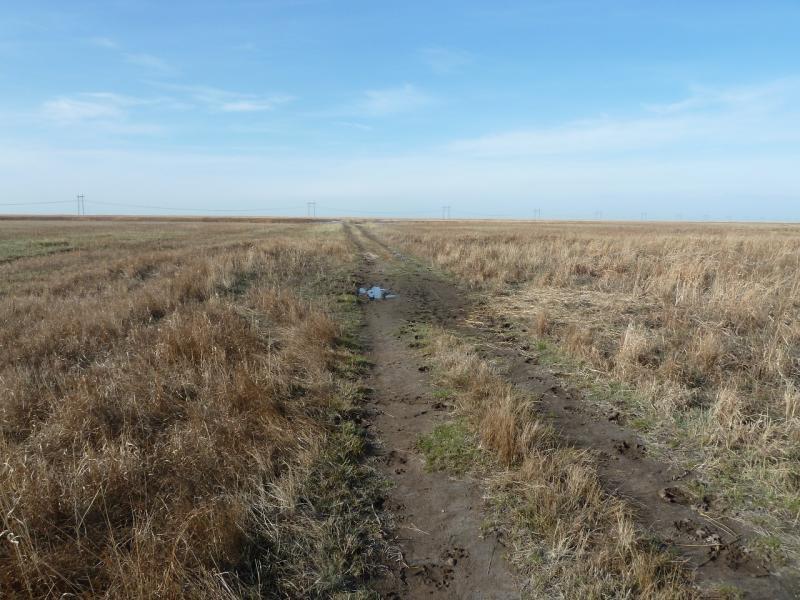 20110419. Первая грязь.