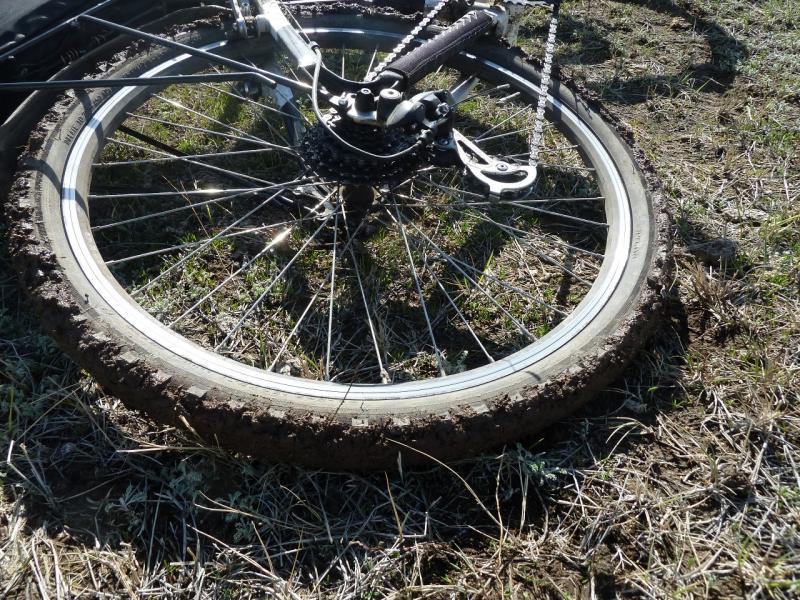 20110419. Спутник второго этапа приключений - грязь.