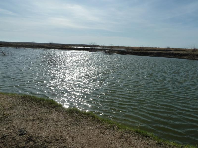 20110419. То-ли карьер для добычи песка, то-ли искусственный водопой для скота.
