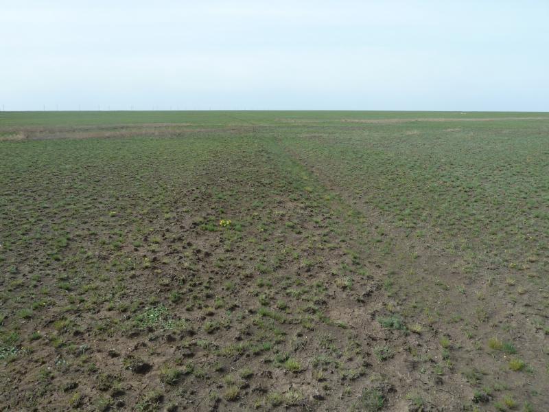 20110419. Когда-то здесь сновала сельскохозяйственная техника.
