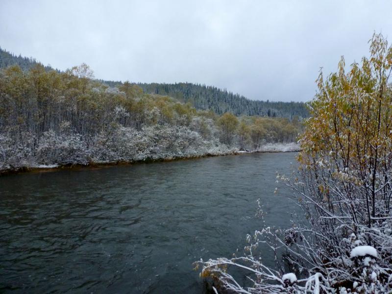20170925. Река Ортон неподалеку от места слияния речкой Фёдоровка.