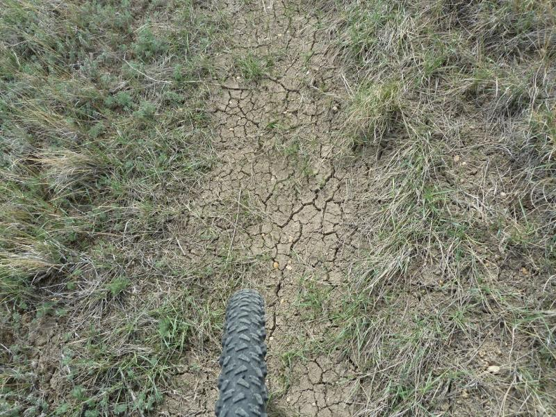 20110419. Песчаная дорога, прикрытая тонкой коркой глины.
