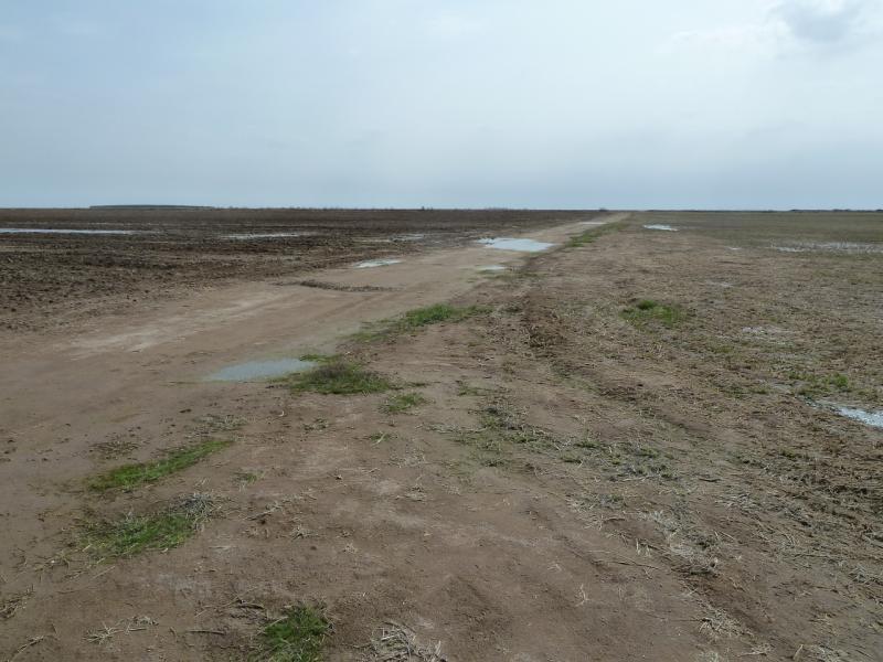 20110419. Наименее затопленная дорога.
