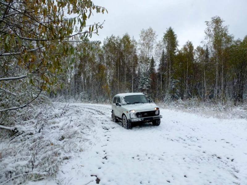 20170925. В заснеженном лесу горной Шории.