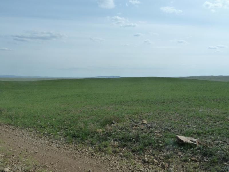 20110517. Горы проявляют себя в деталях, вылезают камни у дороги.