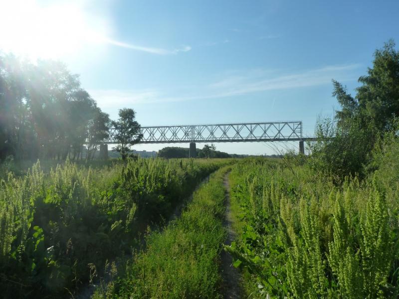 20110618. Вот он - мост.