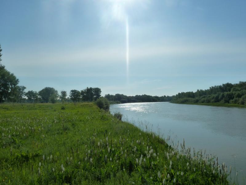 """20110618. """"Тёплое течение"""" за два километра до слияния с Иртышём."""