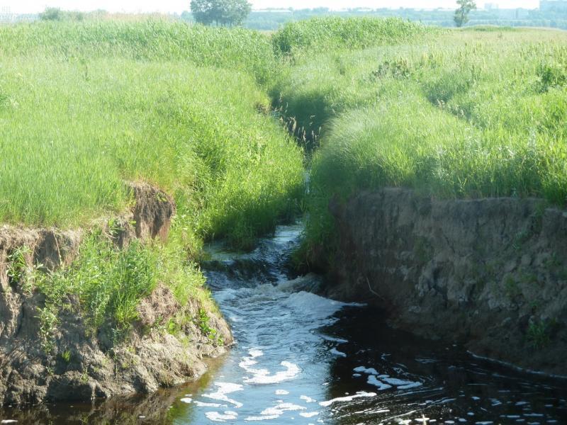 20110618. Чуть дальше - переправа через этот ручей.