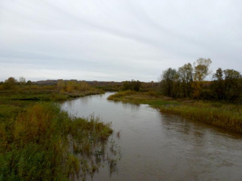 20170926. Река Серта, незадолго перед её впадением в реку Кия.