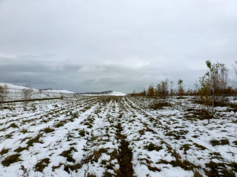 20170926. На склонах распаханных холмов северо-восточных отрогов Кузнецкого Алатау.