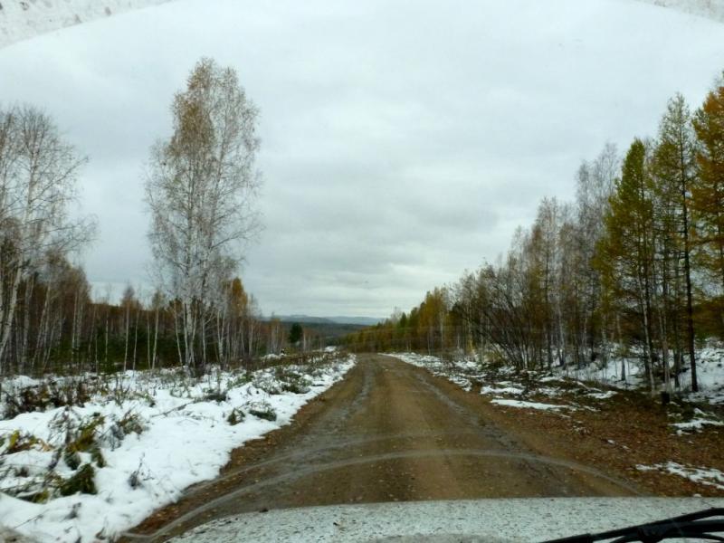 20170926. Лесная дорога в Каратагских горах, неподалеку от озера Учум.