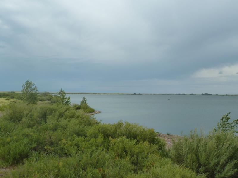 20110807. Павлодар-Астана. Вид на Щидертинское водохранилище.
