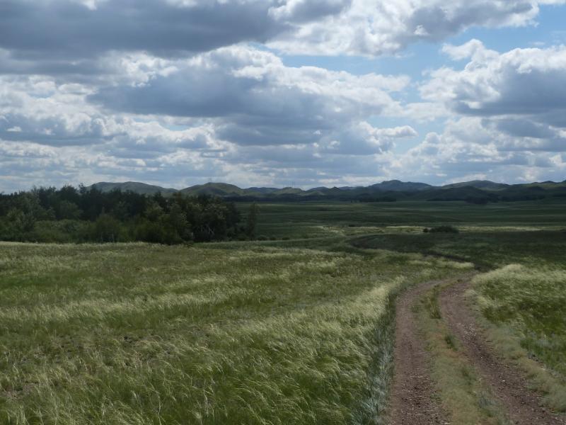 20110808. Павлодар-Астана. Спуск в долину предгорий Ерментау.