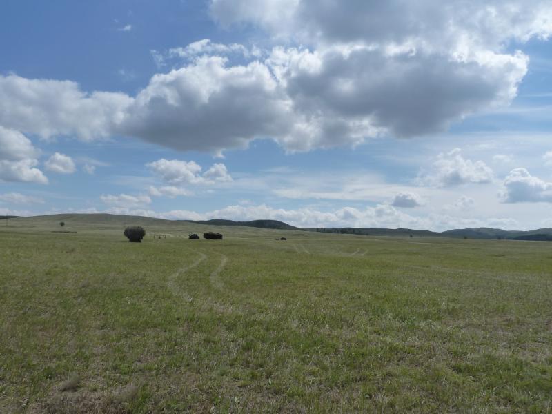 20110809. Павлодар-Астана. Сенокос в долине Жартас.