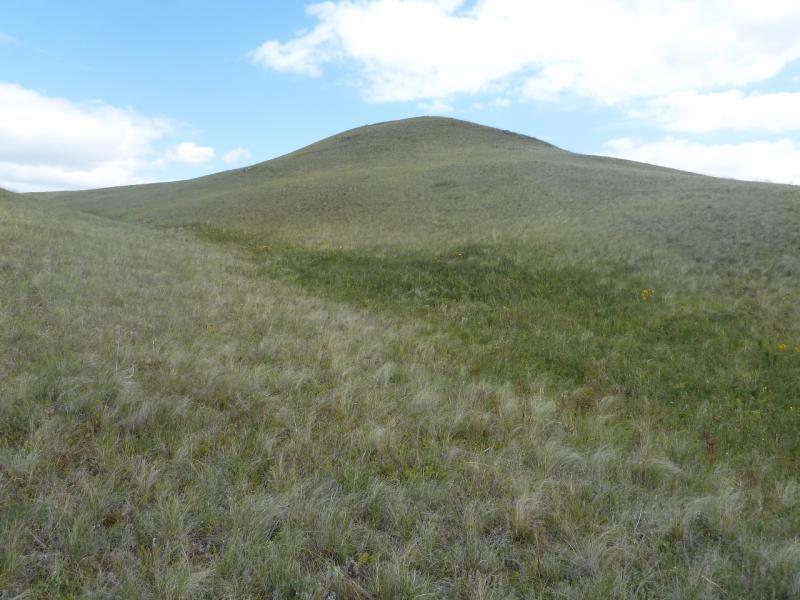 20110809. Павлодар-Астана. Гора Большой Жартас.