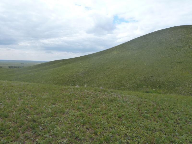 20110809. Павлодар-Астана. Вот такие они - горы Ерментау.