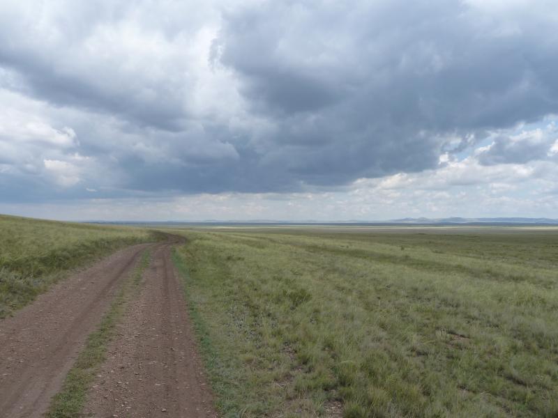 20110810. Павлодар-Астана. Степная дорога из Новодолинки в Благодатное.