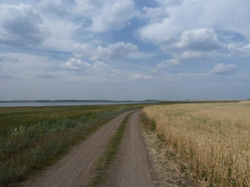 20110816. Астана-Боровое. Мимо озера Балыкты.
