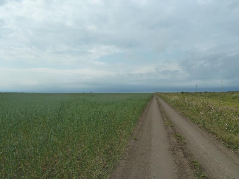 20110817. Астана-Боровое. От Улытогана к Красному Кордону.