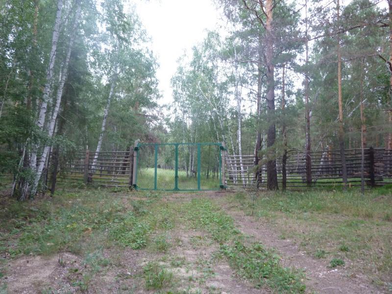 20110817. Астана-Боровое. Подозрительные ворота.